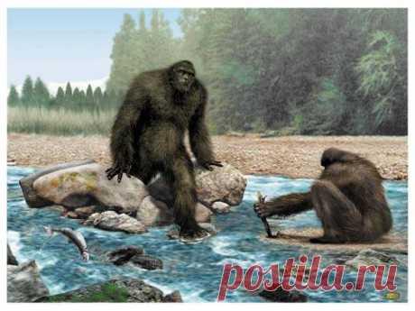 Sasquatch Art (Изображение JPEG, 543×407 пикселов)
