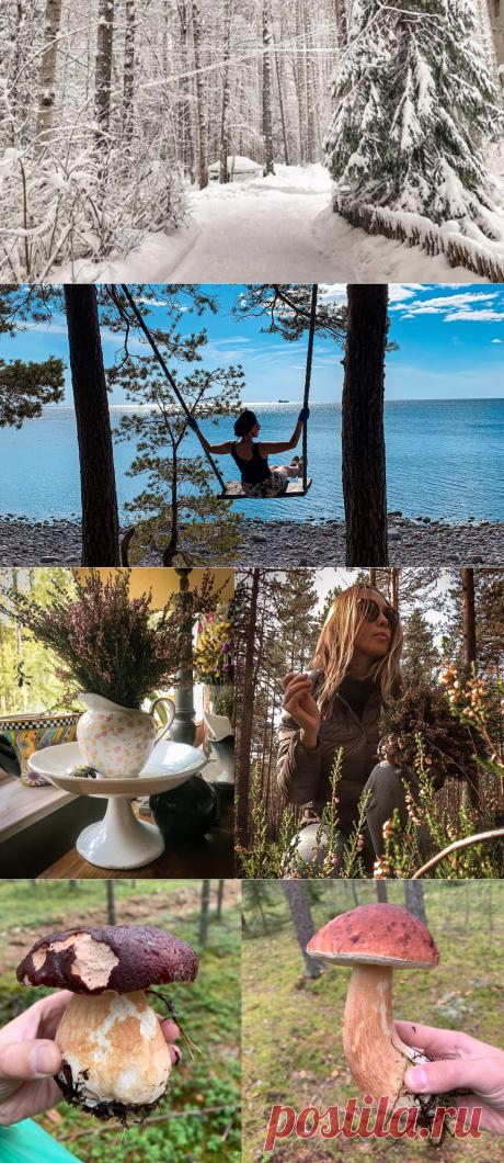 «Какое время года вам ближе всего?»-мои три причины любить осень   Decoro-быт станет уютом   Яндекс Дзен