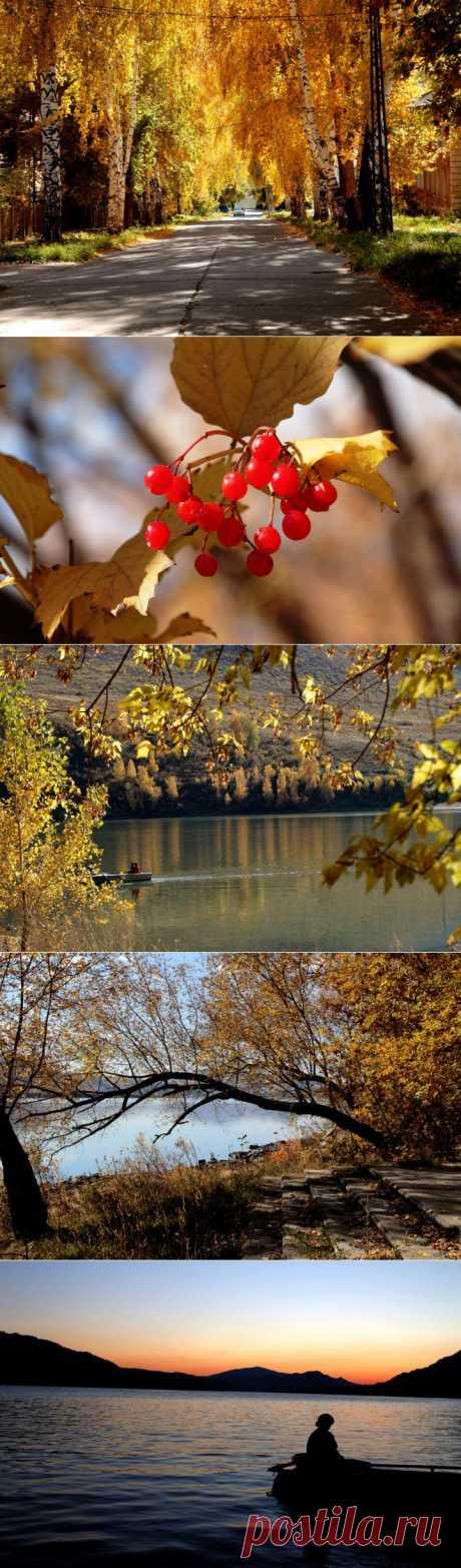 Еще один день осени | Фотоискусство