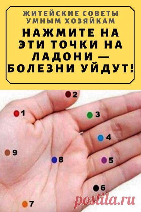 Нажмите на эти точки на ладони — болезни уйдут!   Житейские Советы