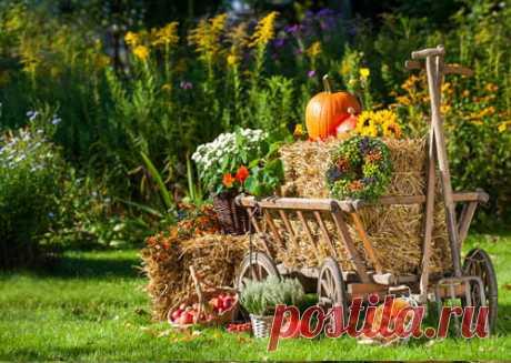 Народный календарь на сентябрь: приметы на каждый день | Графический календарь 2018 Все приметы на сентябрь в соответствии с народным календарем. Название каждого дня недели, а так же советы людям рожденным в эти дни.