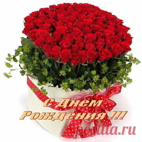 123392005_den_rozhd_shik.jpg (600×600)