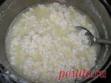Низкокалорийный сыр | Вкусно приготовим