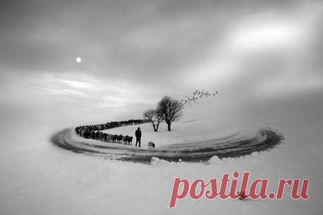 Безумные фото, которые всколыхнут ваше воображение | PhotoWebExpo | Яндекс Дзен