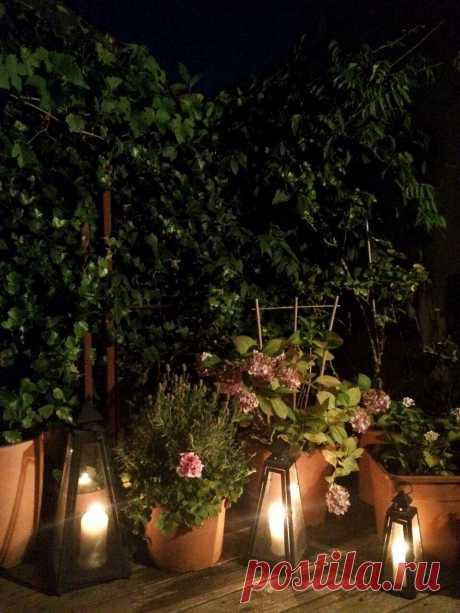 Мой вечер на террасе в Вене. Люблю уют и красоту...