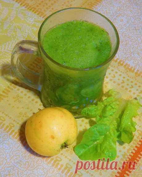 Зеленый антиоксидантный коктейль, препятствующий слизеобразованию в организме   Быстрые рецепты Живое питание   Яндекс Дзен