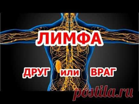 Лимфатическая система ДРУГ или ВРАГ