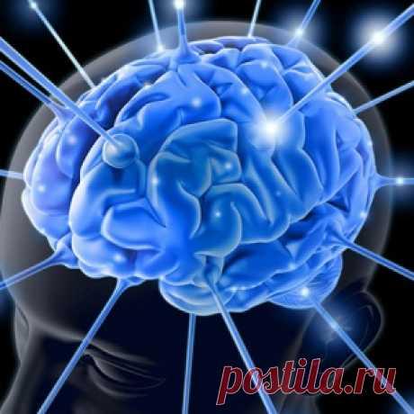 El ejercicio fácil ante el sueño ayudará prevenir la amnesia y la enfermedad altsgeymera - MirTesen