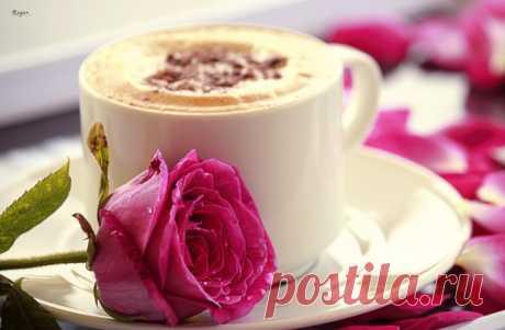 Обои на рабочий стол Цветы:Чашка, Капучино, Цветок, Кружка, Розовая, Роза - скачать бесплатно.   Обои-на-стол.com