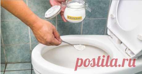 Унитаз будет хронически чист, а запах — свежайший! Всё, что потребуется, это… Мы все сталкиваемся с проблемой неприятных запахов в туалете. Конечно же, сейчас существует масса химических средств, которые помогают справиться с этой проблемой