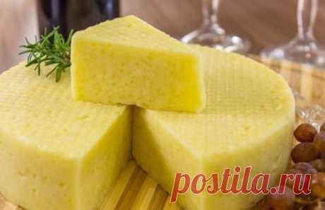 House cheese