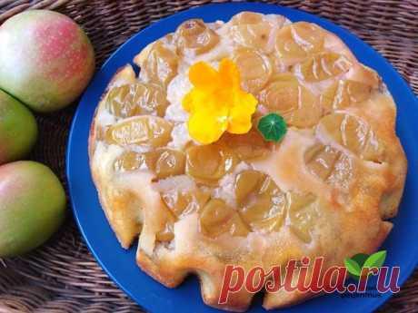 Толстовский яблочный пирог – Удачный рецептик