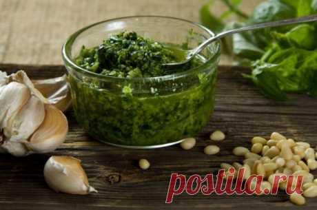 Аджика из петрушки рецепт с фото