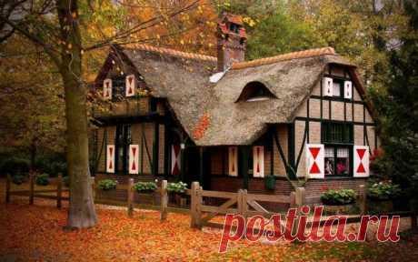 Las casas más hermosas en el bosque