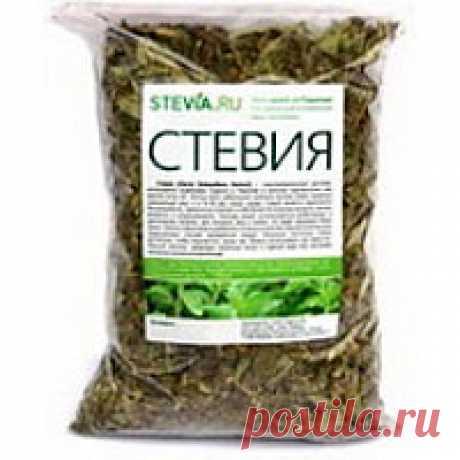 Выращивание стевии - stevia.ru Стевия – это многолетнее травянистое, перекрестноопыляемое растение, семейства астровых, опыляемое преимущественно насекомыми.