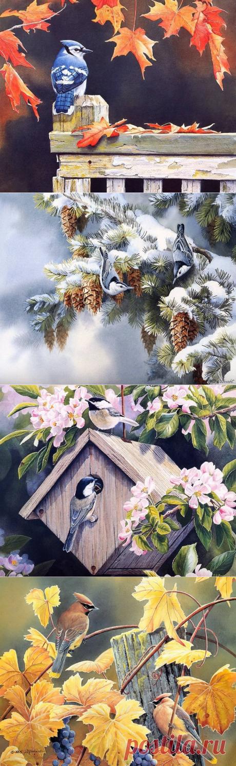 Птицы. Сьюзен Бордет (Susan Bourdet) – американская художница, акварелист.