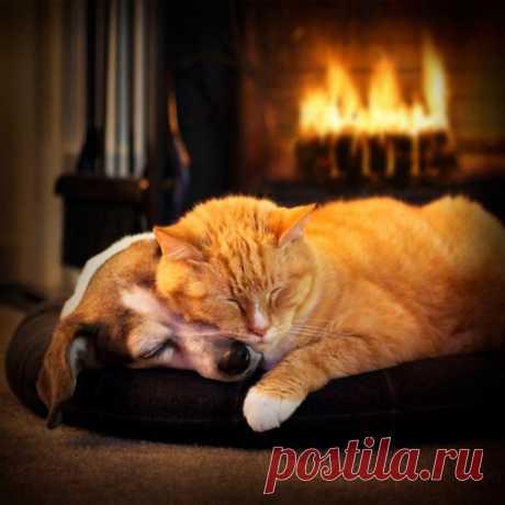 Домашнего уюта и тепла всем!