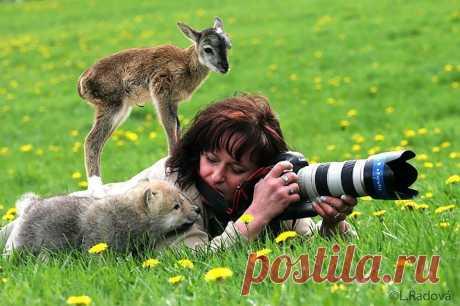 📸 10 доказательств того, что фотограф-натуралист — лучшая в мире работа После этих фото мы решили сменить профессию!