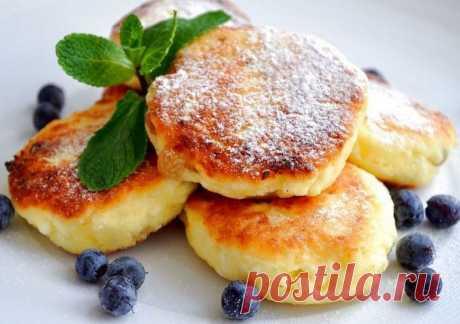 10 самых вкусных рецептов сырников