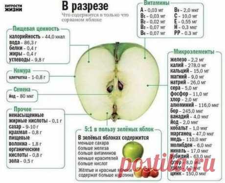 Польза яблока. Любители ли Вы этот фрукт?