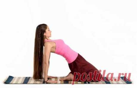 Поза верблюда, плуга и дровосека: упражнения, стройнящие фигуру быстрее всег На сегодняшний день йога становится все популярнее и популярнее. Причина в том, что с ее помощью получится не только найти внутреннее
