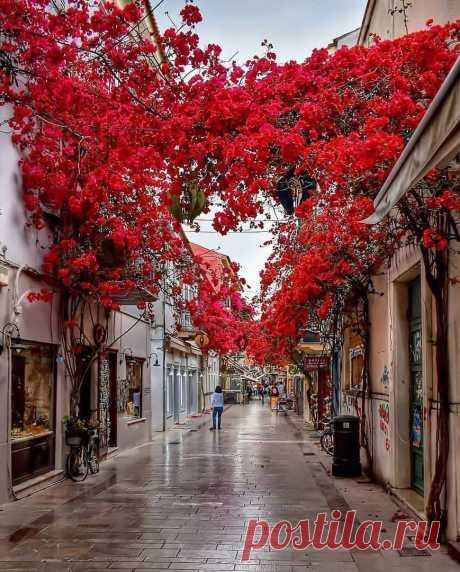 Греция ...