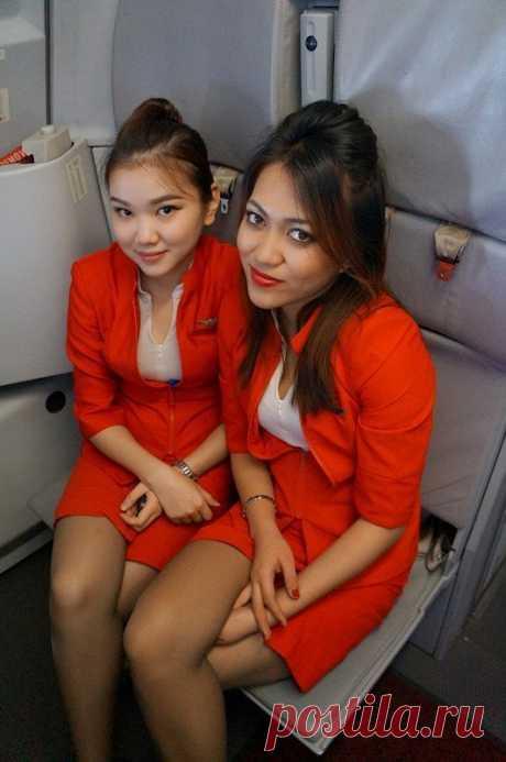 Из-за внешнего вида стюардесс пассажирка написала письмо в сенат Малайзии | Darada
