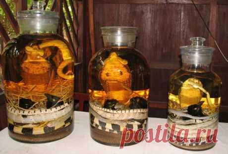 10 bebidas alcohólicas más exóticas