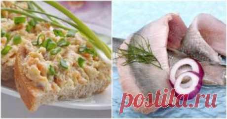 Селедочный паштет: чудо-закуска, достойная всяческих похвал ...