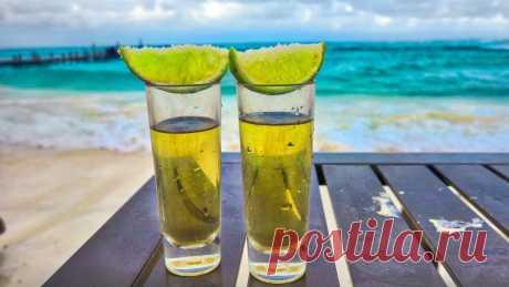 Старинный оригинальный рецепт итальянского лимончелло и пьяного лимона   Самогонофф   Яндекс Дзен