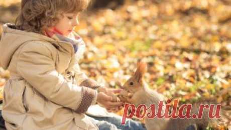 Чем занять ребенка осенью | Детский развлекательный центр «ТУТУ-СИТИ»