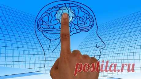 Названы простые способы защитить мозг от возрастных разрушений