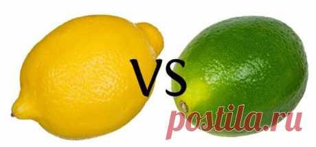Знаете ли вы разницу между лимоном и лаймом? - Советы для тебя