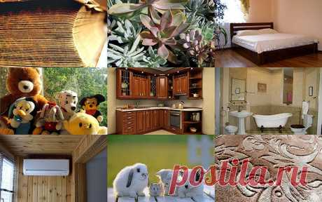 10 источников аллергии в вашем доме : НОВОСТИ В ФОТОГРАФИЯХ