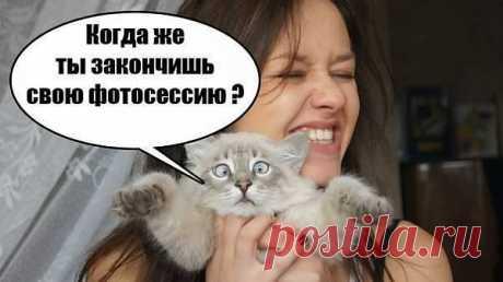 бедный котик!!!