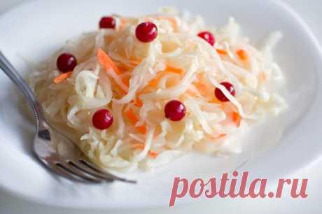 Как правильно квасить капусту на зиму в ведре? 6 рецептов закваски