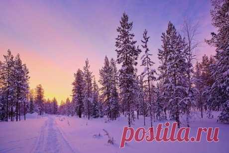 Магическая красота Лапландии