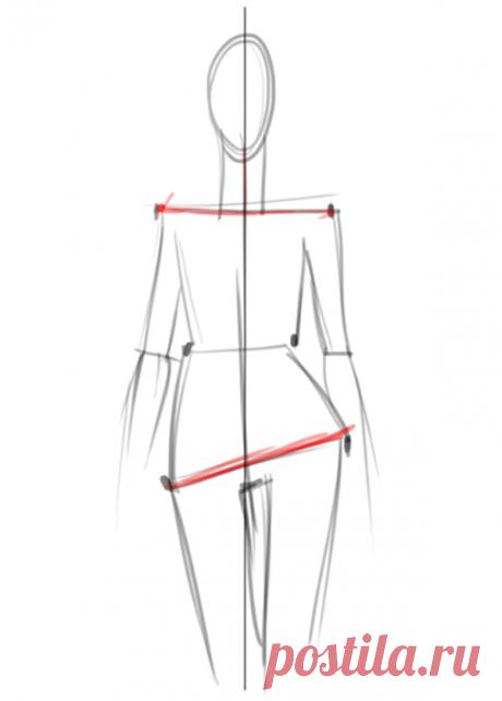 Мы всегда начинаем построение фигуры с оси и двух основных линий — плечей и бедер.