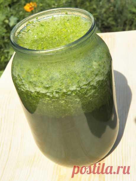 Зелёный напиток, очищающий кровеносные сосуды и почки | Быстрые рецепты Живое питание | Яндекс Дзен