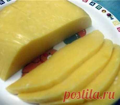 Домашний твердый сыр рецепт с фото - рецепты с фото