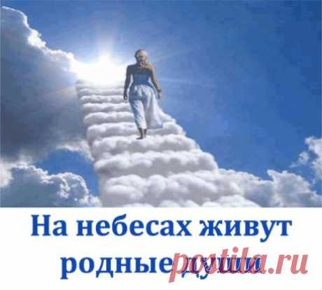 На небесах живут родные души ,  Стараются нас оградить от бед.  Их надо научиться только слушать ,  Мы сможем получить от них совет.