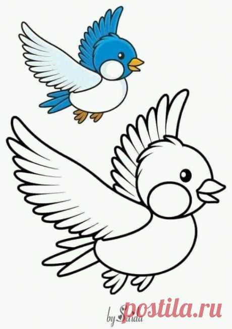 Рисуем и разукрашиваем птичек