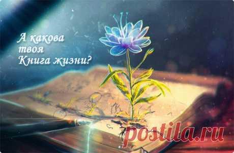 Люби жизнь! 20 цитат - читать на сайте Мир позитива