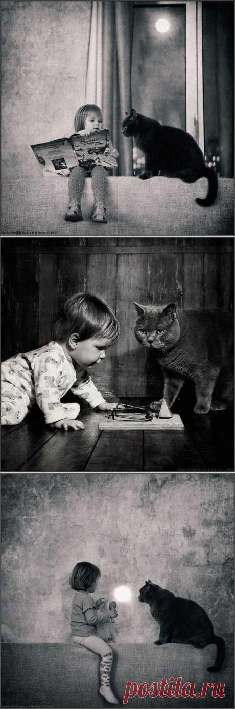 Когда твой друг - кот: идея для серии фотографий с ребенком