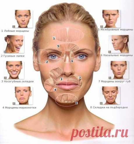 Подтянутая кожа лица за 10 минут в день Если вы хотите, чтобы ваши мышцы лица были сильными и подтянутыми, несложные упражнения, описанные в этой статье, помогут вам.
