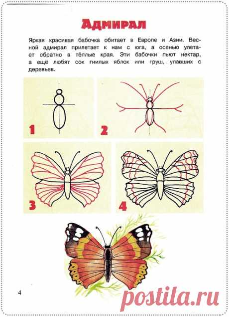 Простые уроки рисования: бабочки и их друзья — Сделай сам, идеи для творчества - DIY Ideas