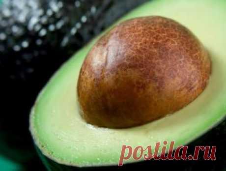 Любите авокадо? Не выбрасывайте косточку! Вот несколько способов её применения Вероятно, вы уже знаете, что авокадо — один из самых питательных продуктов. Эти мягкие масляные плоды отлично подходят для похудения, здоровой кожи и волос, сбалансированного уровня сахара в крови и у…