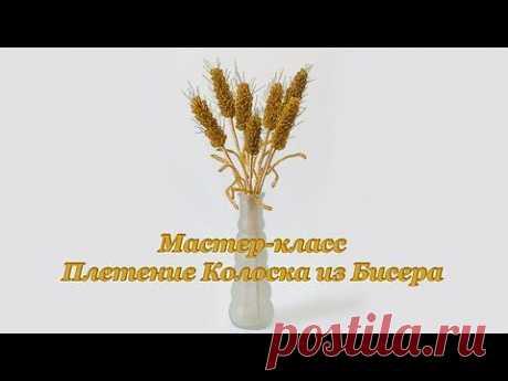 ▶ Мастер-класс Плетение Колоска из Бисера - YouTube