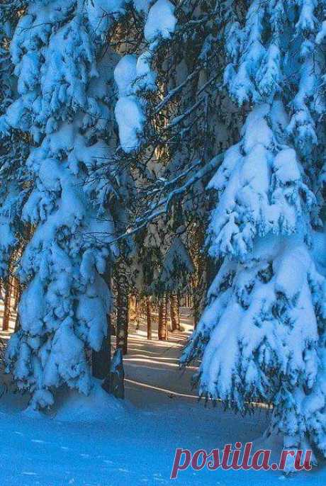 ЗЕМЛЯ И ВСЕЛЕННАЯ(Космос,Астрономия,Природа) — Зимние пейзажи | OK.RU