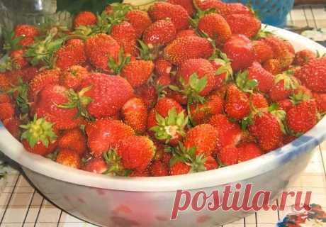 Первый урожай клубники крупный, а потом растут мелкие ягоды. Подскажу, КАК ЭТОГО ИЗБЕЖАТЬ | 6 соток